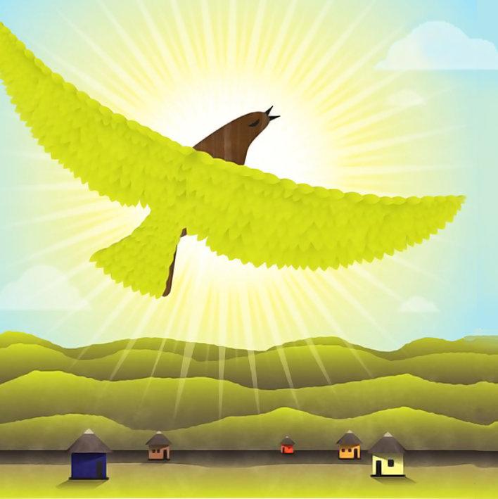 The last bird