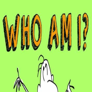 What i m I?